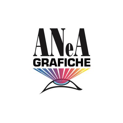 Logo ANeA Srl - Cliente Citynet Srl