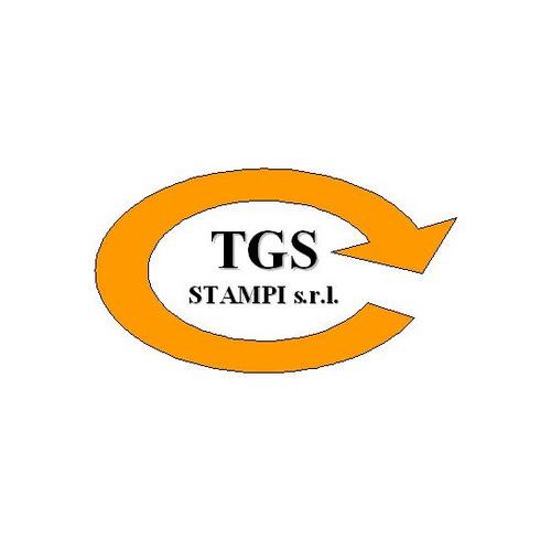 Logo TGS STAMPI Srl - Cliente Citynet Srl